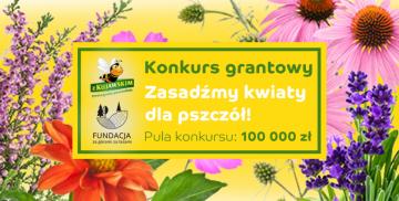 """""""Zasadźmy kwiaty dla pszczół"""""""